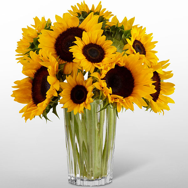 The Ftd 174 Sunshine Daydream Bouquet Vase Included Judy