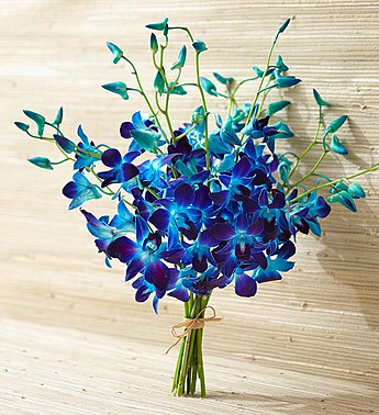 10 Stems Bouquet Only