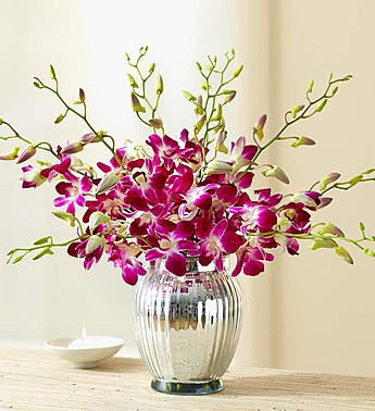 10 Stems with Silver Vase