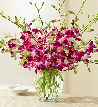 20 Stems with Clear Vase
