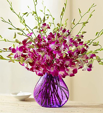 20 Stems with Purple Vase