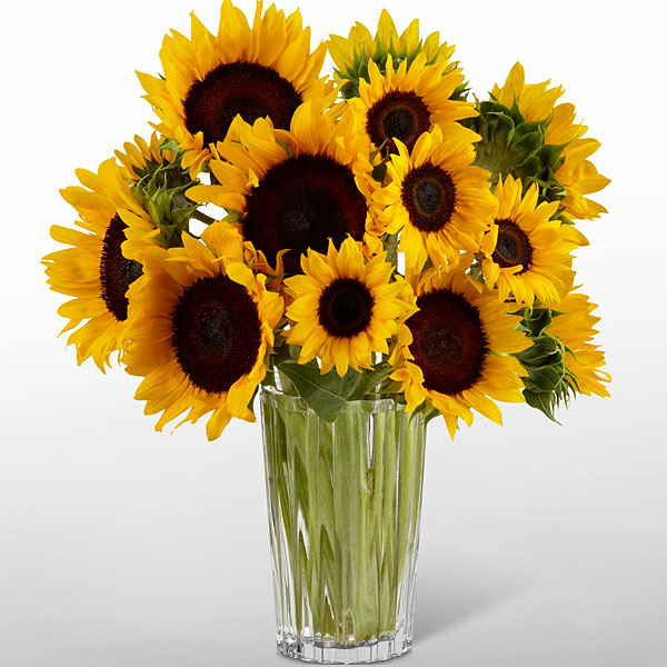The ftd golden sunflower bouquet by vera wang judy s