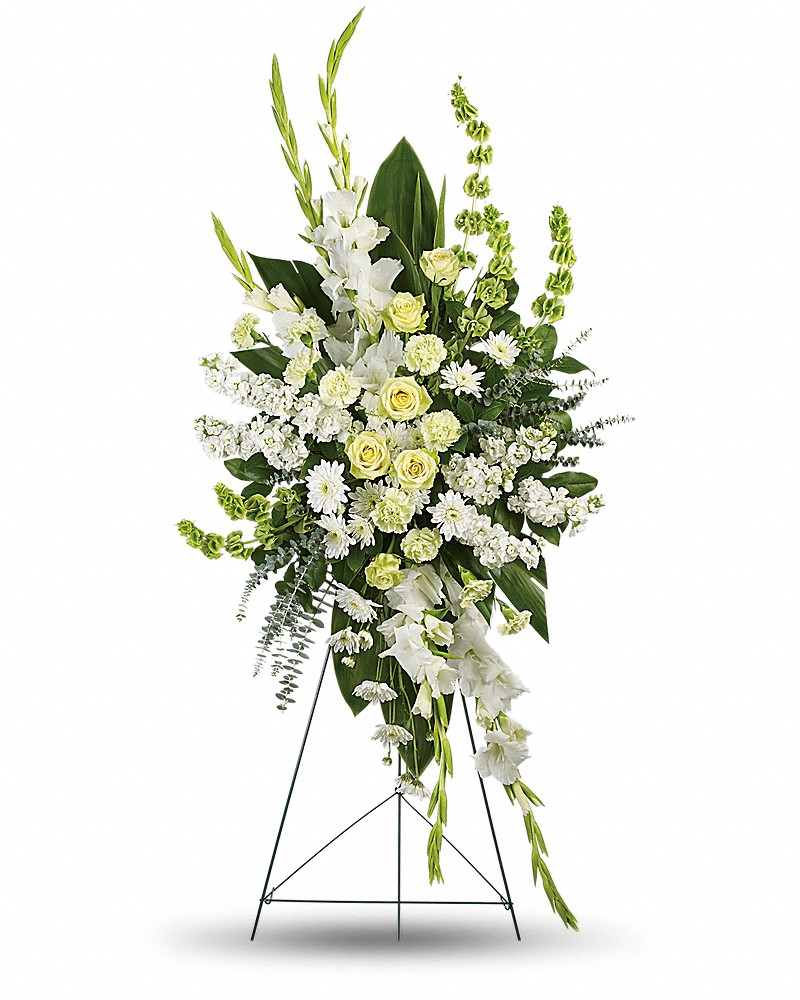 Magnificent life spray judys village flowers dhlflorist Image collections
