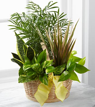 The French Garden™ by FTD® – BASKET INCLUDED