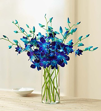 10 Stems with Clear Vase