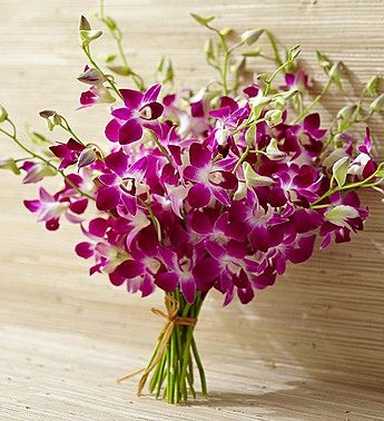 20 Stems Bouquet Only