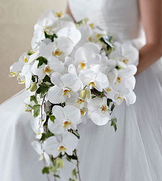 The FTD Classic White Bouquet