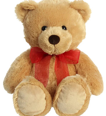 Medium Plush Bear